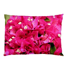 BOUGAINVILLEA Pillow Cases