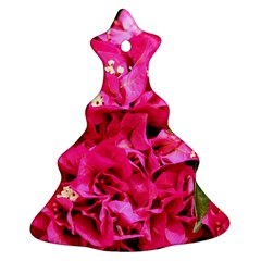 BOUGAINVILLEA Ornament (Christmas Tree)