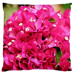 BOUGAINVILLEA Large Flano Cushion Cases (One Side)