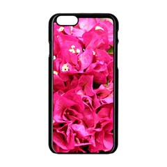 Bougainvillea Apple Iphone 6/6s Black Enamel Case