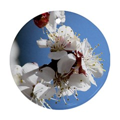 APRICOT BLOSSOMS Round Ornament (Two Sides)