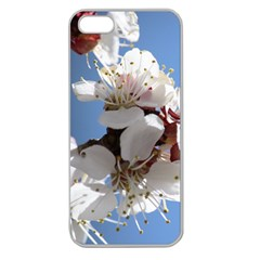 APRICOT BLOSSOMS Apple Seamless iPhone 5 Case (Clear)
