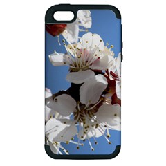 APRICOT BLOSSOMS Apple iPhone 5 Hardshell Case (PC+Silicone)