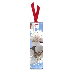 APRICOT BLOSSOMS Small Book Marks