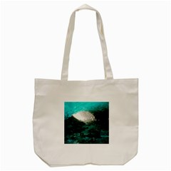 MENDENHALL ICE CAVES 2 Tote Bag (Cream)