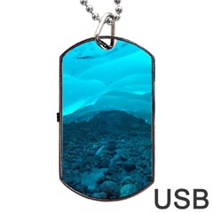 Mendenhall Ice Caves 1 Dog Tag Usb Flash (one Side)