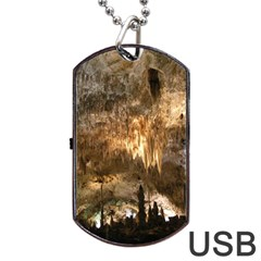 CARLSBAD CAVERNS Dog Tag USB Flash (Two Sides)