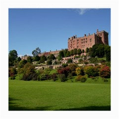 POWIS CASTLE TERRACES Medium Glasses Cloth (2-Side)