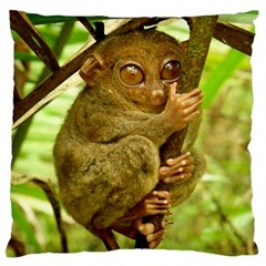 Tarsier Large Flano Cushion Cases (two Sides)