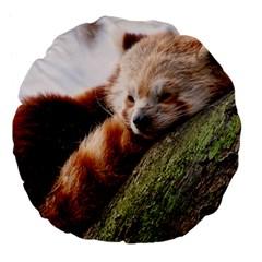 Red Panda Large 18  Premium Flano Round Cushions