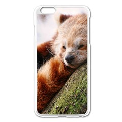 Red Panda Apple Iphone 6 Plus/6s Plus Enamel White Case