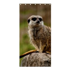 Meerkat Shower Curtain 36  X 72  (stall)