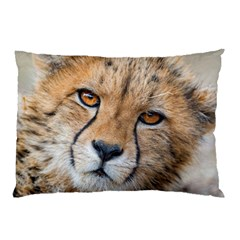 Leopard Laying Down Pillow Cases