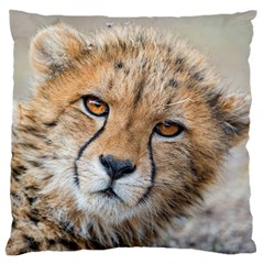 Leopard Laying Down Standard Flano Cushion Cases (two Sides)