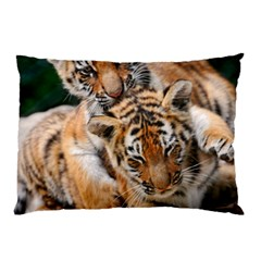 Baby Tigers Pillow Cases (two Sides)