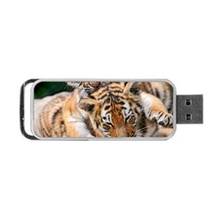 Baby Tigers Portable Usb Flash (two Sides)
