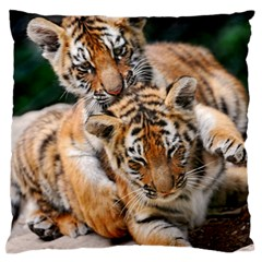 Baby Tigers Standard Flano Cushion Cases (two Sides)