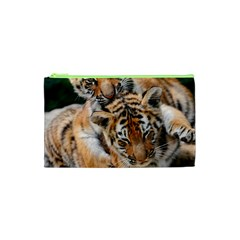 Baby Tigers Cosmetic Bag (xs)