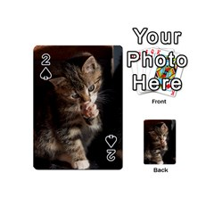 Talk To The Paw Playing Cards 54 (mini)