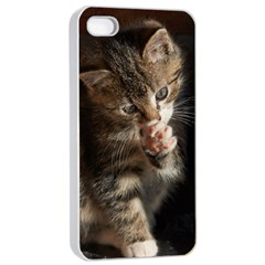 Talk To The Paw Apple Iphone 4/4s Seamless Case (white)