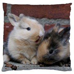 Small Baby Rabbits Standard Flano Cushion Cases (two Sides)