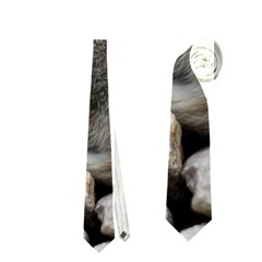 Small Baby Bunny Neckties (two Side)