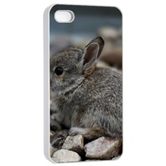 Small Baby Bunny Apple Iphone 4/4s Seamless Case (white)