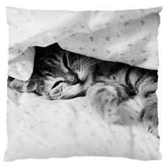 Sleepy Kitty Standard Flano Cushion Cases (two Sides)