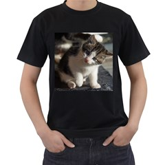 Questioning Kitty Men s T Shirt (black) (two Sided)