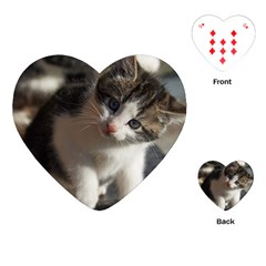 Questioning Kitty Playing Cards (heart)