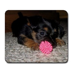 Puppy With A Chew Toy Large Mousepads