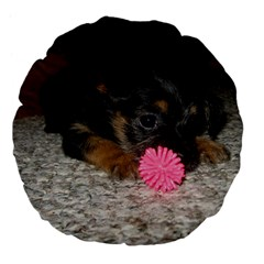 Puppy With A Chew Toy Large 18  Premium Flano Round Cushions