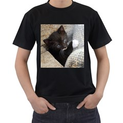 Pretty Blue Eyed Kitty Men s T Shirt (black) (two Sided)