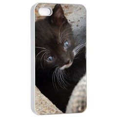 Pretty Blue Eyed Kitty Apple Iphone 4/4s Seamless Case (white)
