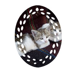 Kitty Twins Oval Filigree Ornament (2 Side)