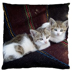 Kitty Twins Large Flano Cushion Cases (one Side)