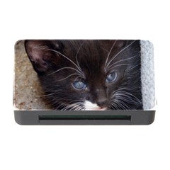 Kitty In A Corner Memory Card Reader With Cf