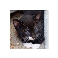 Kitty In A Corner Satin Bandana Scarf