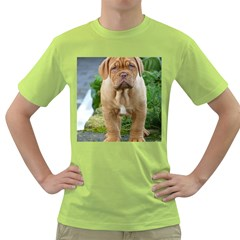Cute Wrinkly Puppy Green T Shirt
