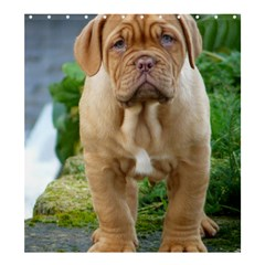 Cute Wrinkly Puppy Shower Curtain 66  X 72  (large)