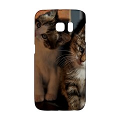 Cute Kitties Galaxy S6 Edge