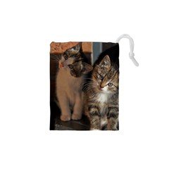 Cute Kitties Drawstring Pouches (xs)