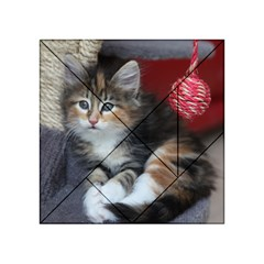 Comfy Kitty Acrylic Tangram Puzzle (4  X 4 )