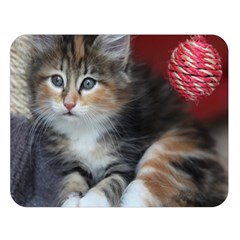 Comfy Kitty Double Sided Flano Blanket (large)