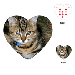 Blue Eyed Kitty Playing Cards (heart)