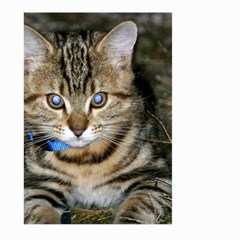 Blue Eyed Kitty Large Garden Flag (two Sides)