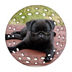 Alert Pug Puppy Ornament (round Filigree)