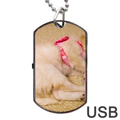Adorable Sleeping Puppy Dog Tag Usb Flash (one Side)