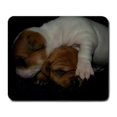 Adorable Baby Puppies Large Mousepads