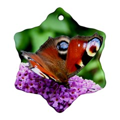 Peacock Butterfly Ornament (snowflake)
